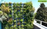 Minigarden na zahradách a terasách