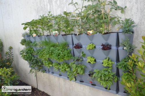 Minigarden revolu n koncept v mini vertik ln ch zahrad ch - Leunde tegen castorama prieel ...