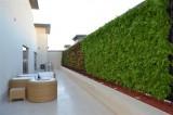 Minigarden zelené stěny v hotelích a firmách